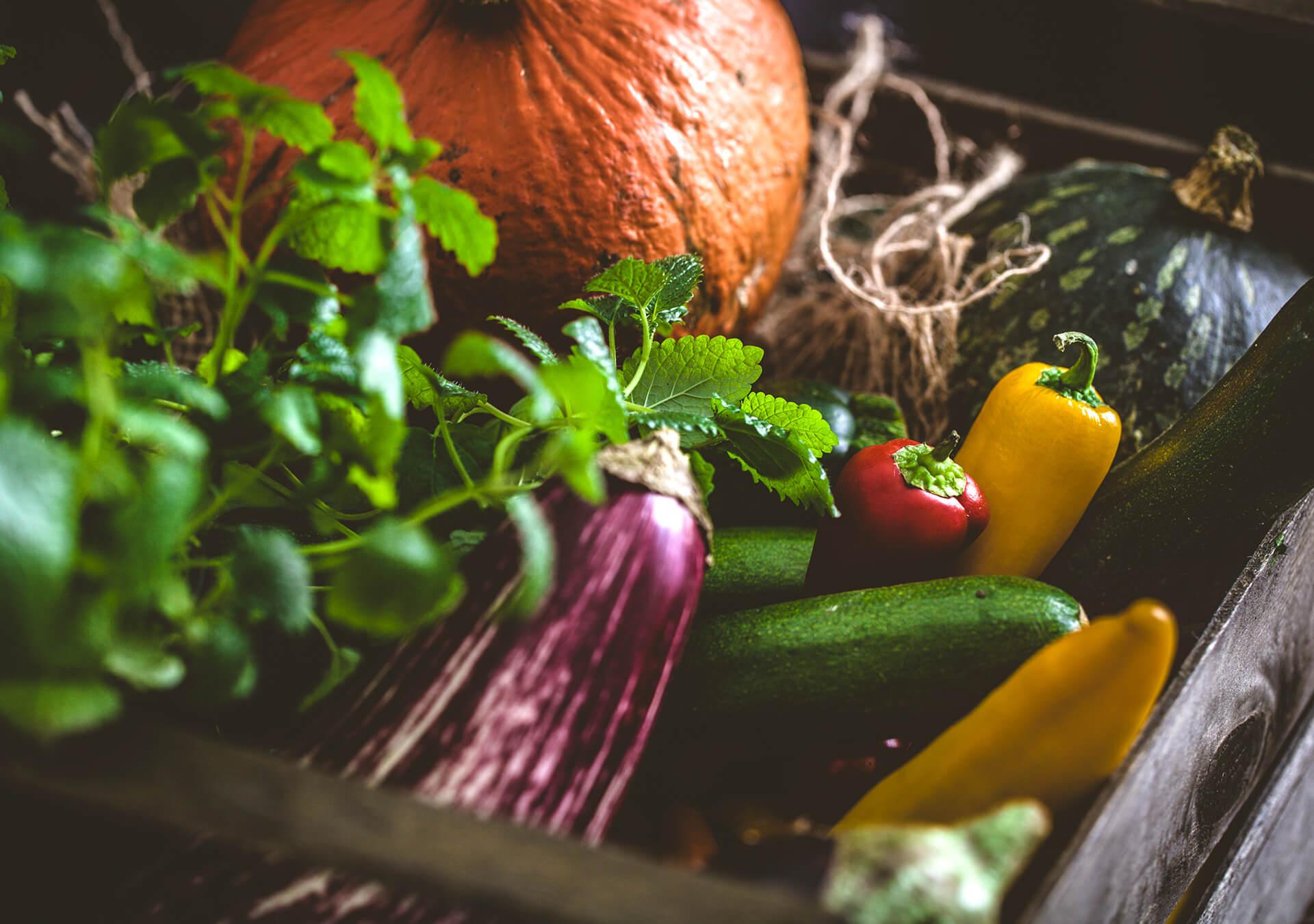 CSAM | Conseil du Système Alimentaire Montréalais