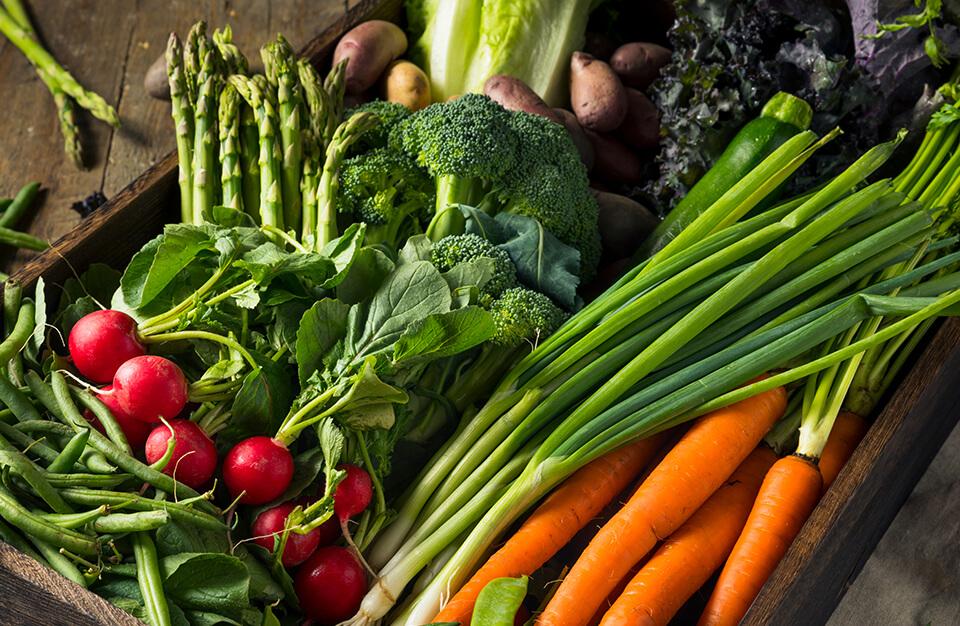 Répertoire de Projets | Accès au marché | Conseil du Système alimentaire montréalais